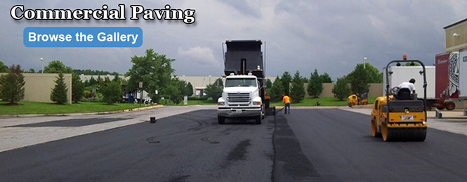 Commercial Asphalt Paving Project